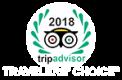 Travellers Choice Logo klein